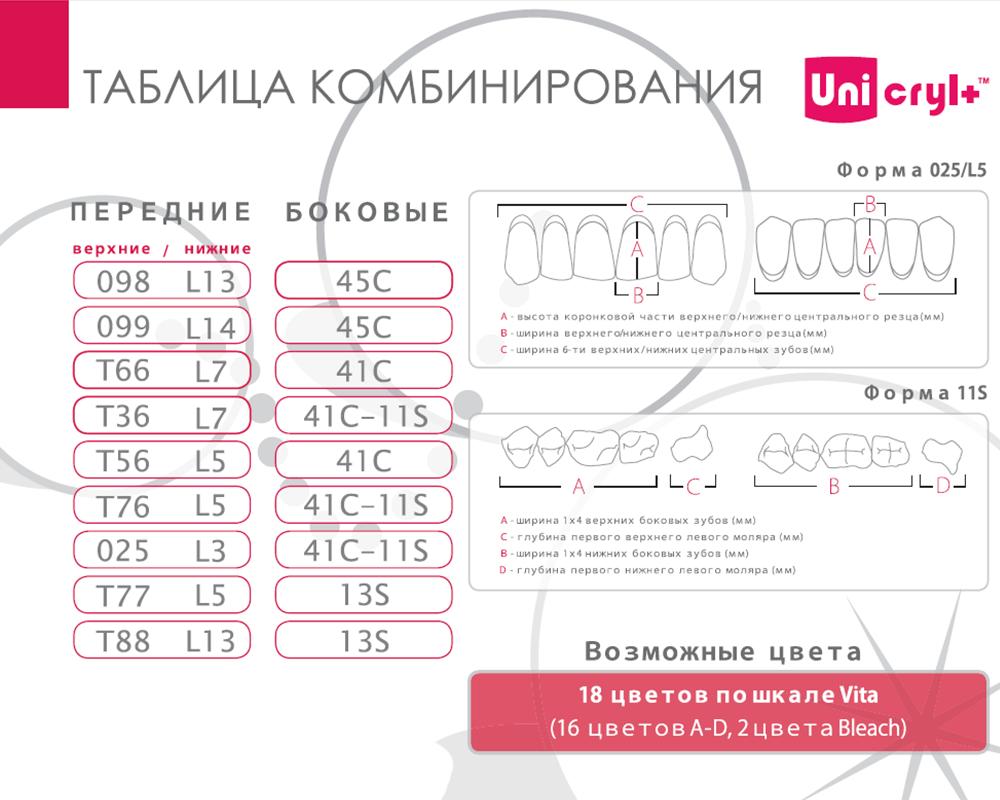 Зубы - Зубы Uniсryl Plus 13S