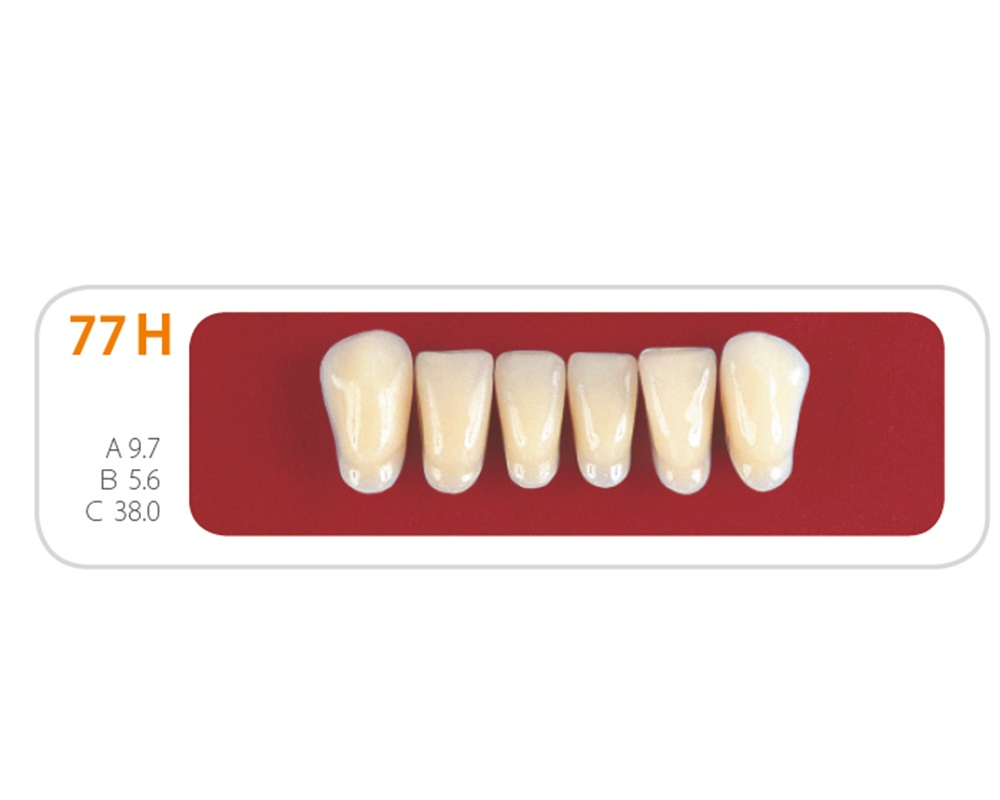 Зубы - Зубы Uniсryl 77H