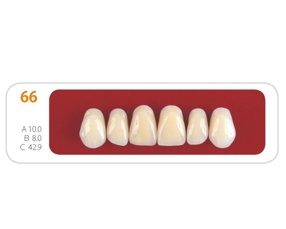 Зубы - Зубы Uniсryl 66