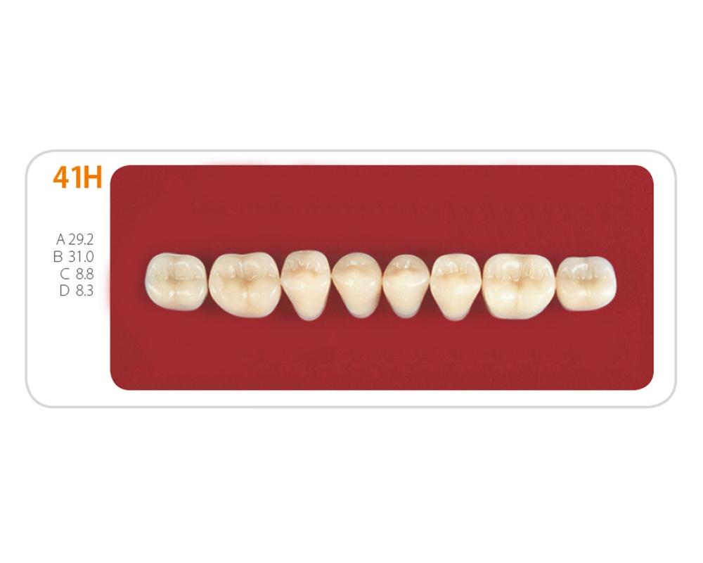 Зубы - Зубы Uniсryl 41H
