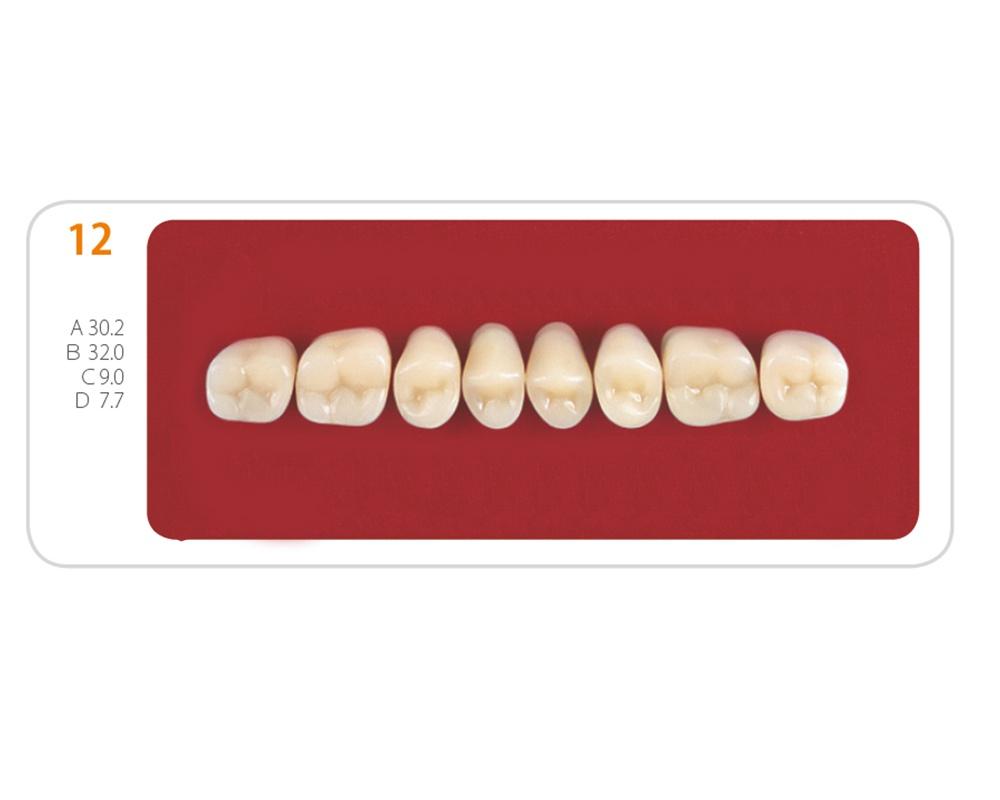 Зубы - Зубы Uniсryl 12