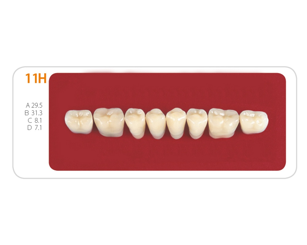 Зубы - Зубы Uniсryl 11H