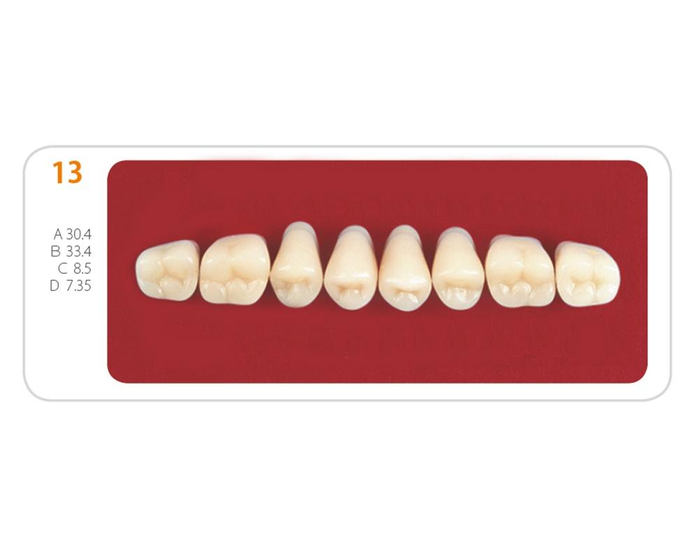 Зубы - Зубы Uniсryl 13