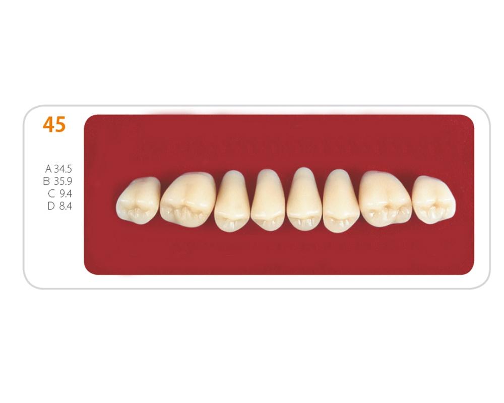 Зубы - Зубы Uniсryl 45