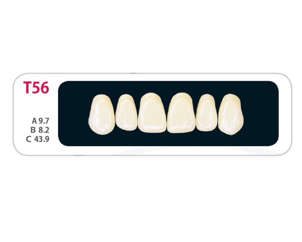 Зубы - Зубы Uniсryl Plus T56