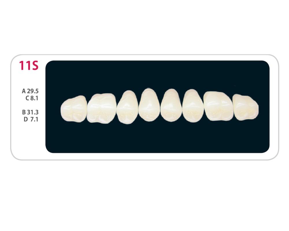 Зубы - Зубы Uniсryl Plus 11S