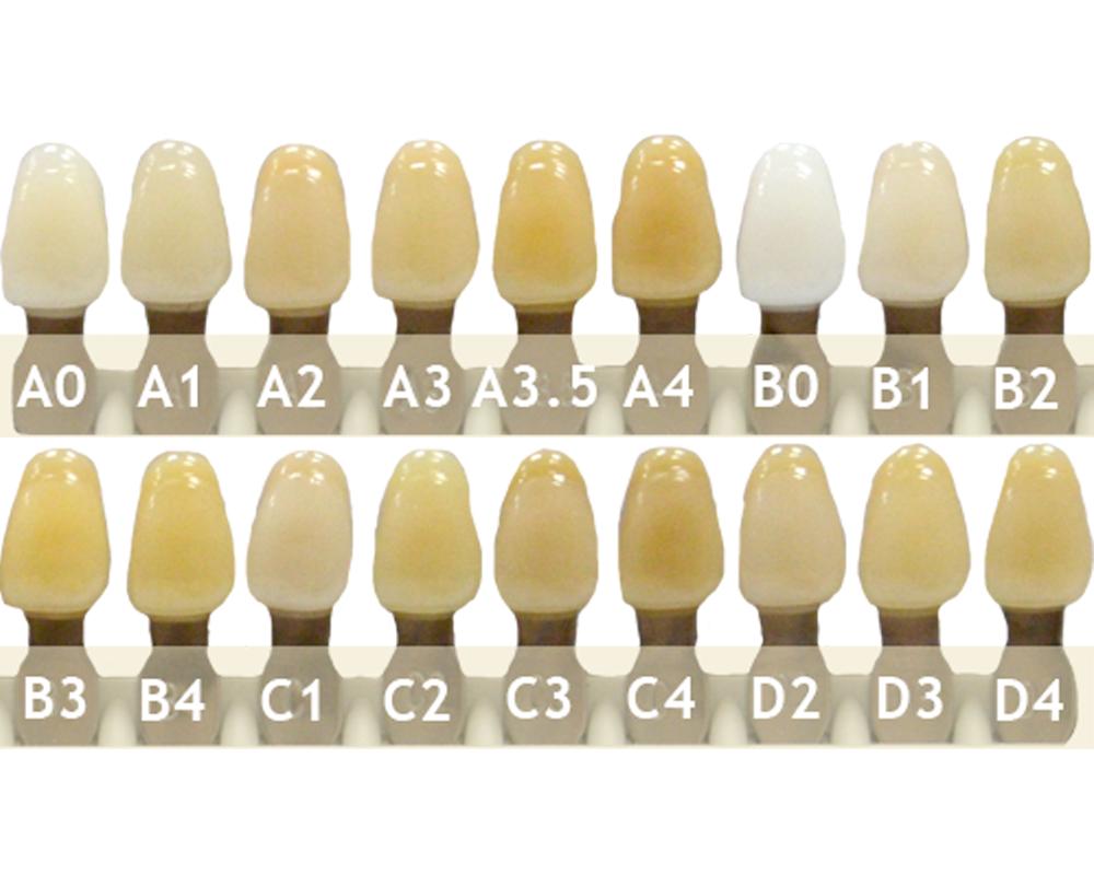 Зубы - Зубы Uniсryl Plus 41C