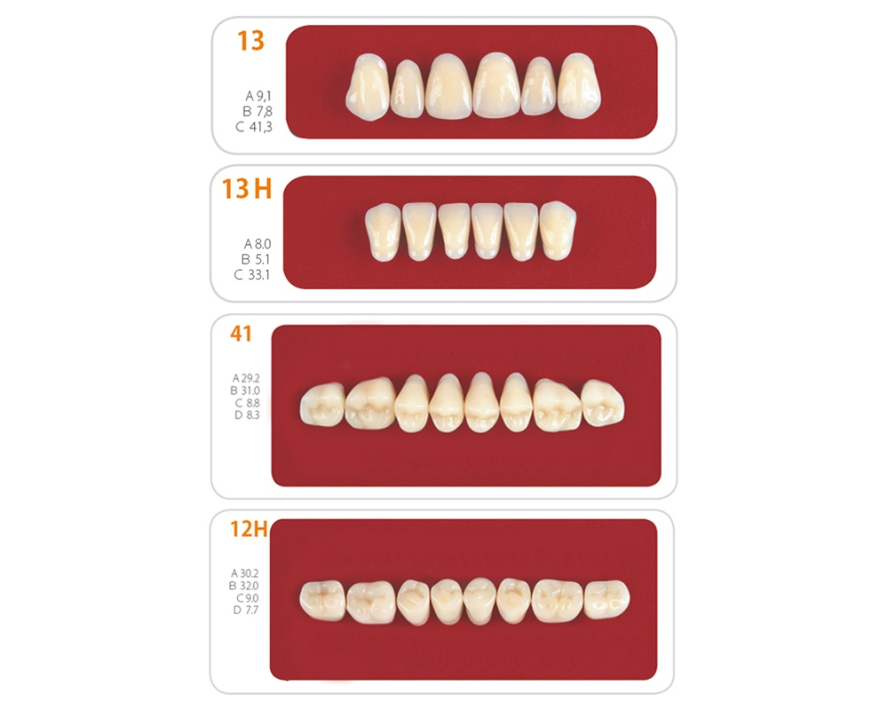 Зубы - Набор зубов 1