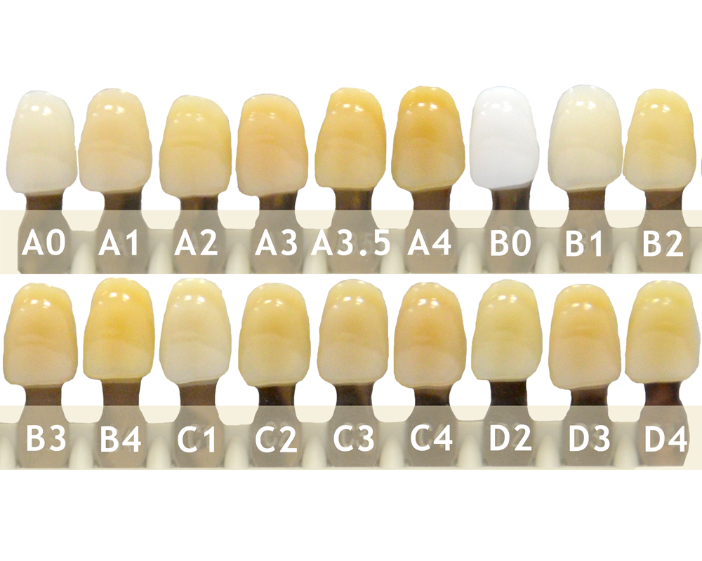 Зубы - Набор зубов 11