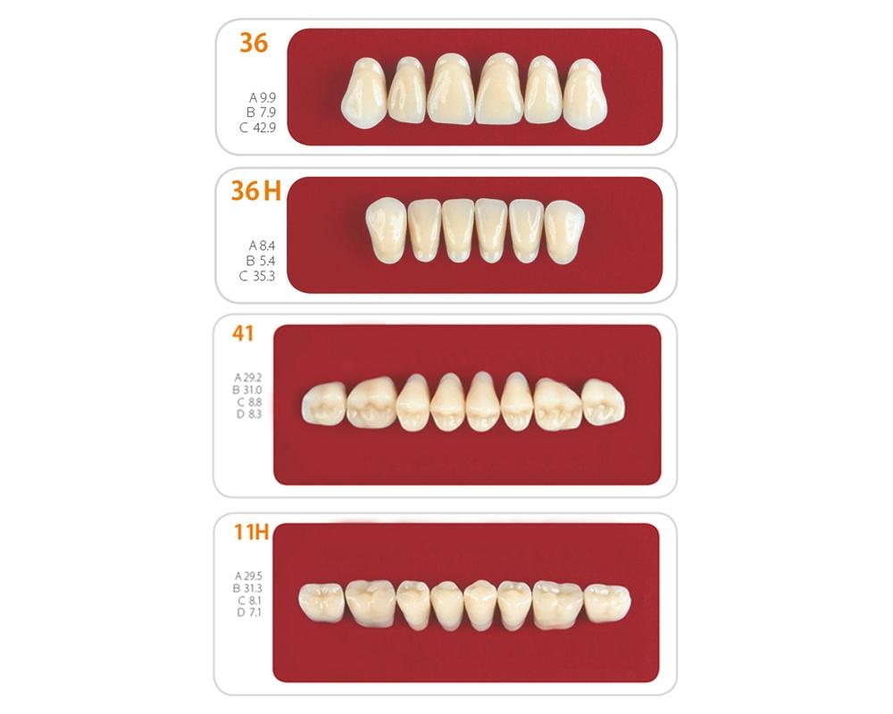 Зубы - Набор зубов 6