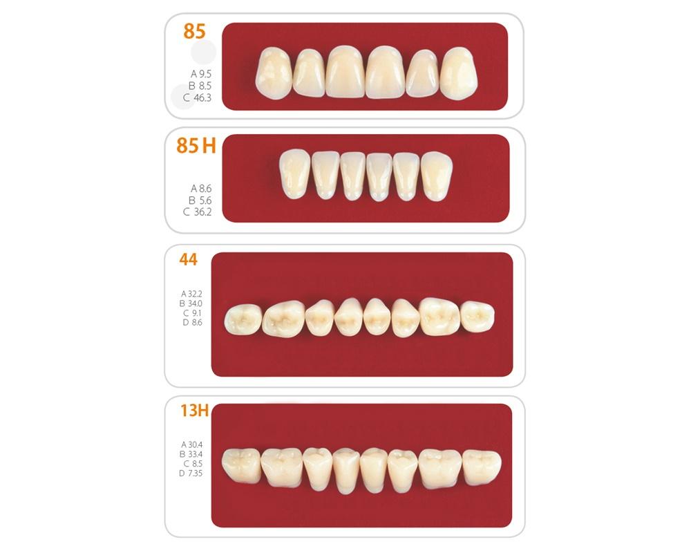 Зубы - Набор зубов 13