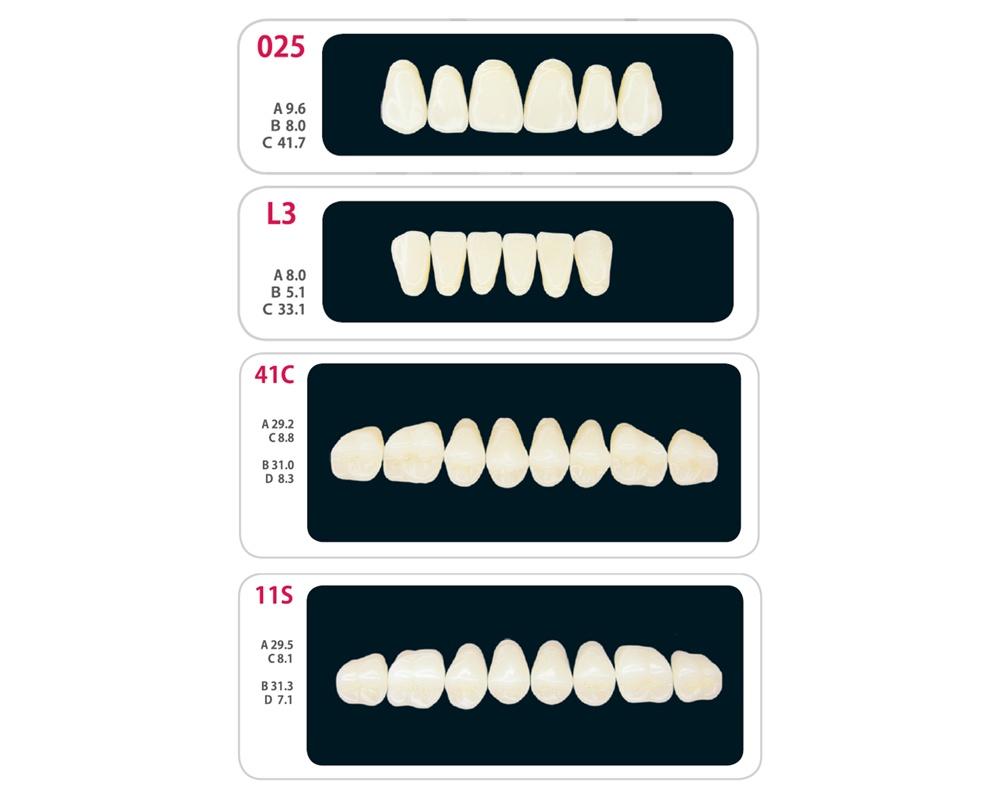 Зубы - Набор зубов 7