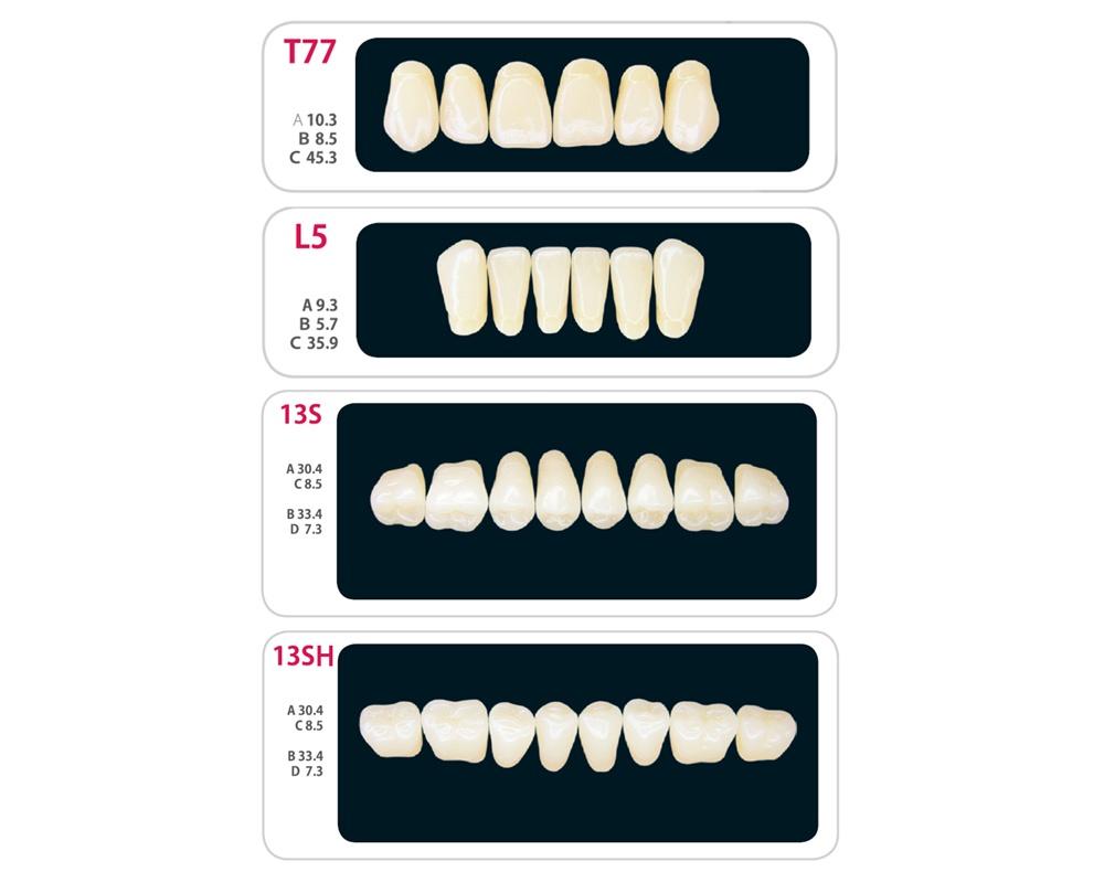 Зубы - Набор зубов 8